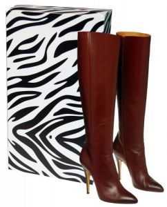 Pack of 5 Caraselle New & Unique Zebra Print Ladies Stackable Knee Boot Box