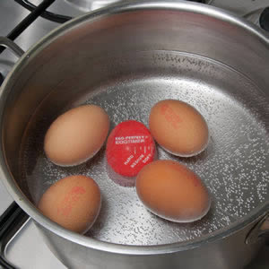 Caraselle Egg-Perfect Egg Timer.  Changes colour as the eggs cook