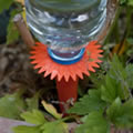 Pack of 6 Watering Spikes.  The ultimate plant watering solution
