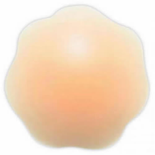Caraselle Re-Useable Nipple Covers 1 pair