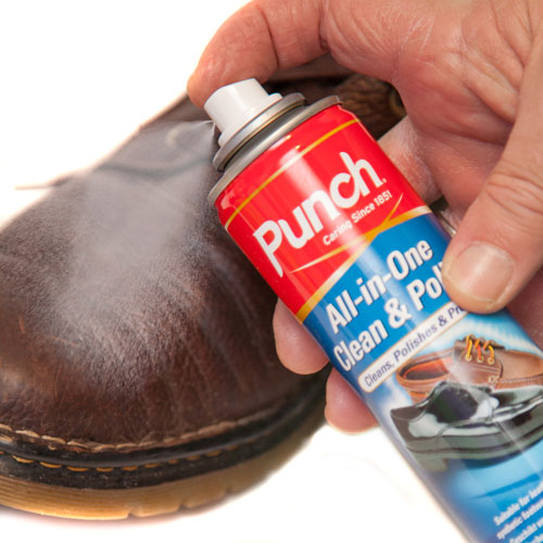 shoe clean and polish spray