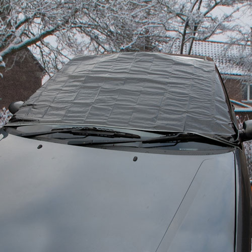 Winter Survival car cover